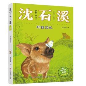 动物小说大王沈石溪·注音读本:野猪囚犯
