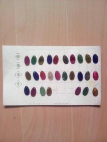 橄榄珠片27枚