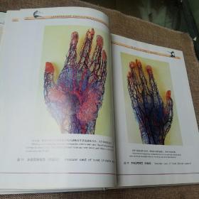 人体管道铸型彩色图鉴