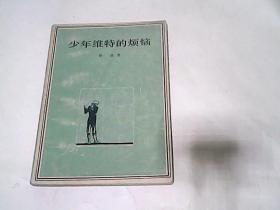 少年维特的烦恼(人民文学出版社)