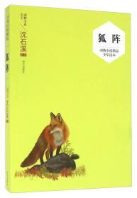 狐阵-动物小说精品少年读本 沈石溪 明天出版社 9787533288372