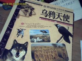 世界动物文学经典【乌鸦天使】