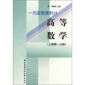一元函数微积分:高等数学(上册·第1分册)