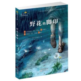 国际大奖小说·成长版——野花的脚印