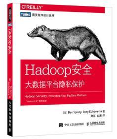 图灵程序设计丛书Hadoop安全大数据平台隐私保护