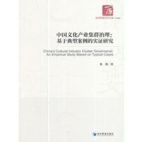 中国文化产业集群治理:基于典型案例的实证研究(经济管理学术文库·管理类)