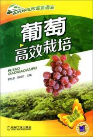 葡萄高效栽培-高效种植致富直通车-07