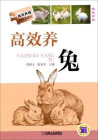 高效养兔:双色印刷