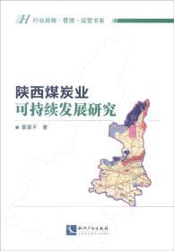 陕西煤炭业可持续发展研究