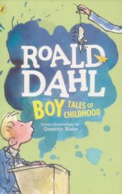 送书签cy-9780142413814-Boy: Tales of Childhood