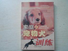 家庭宠物犬训练