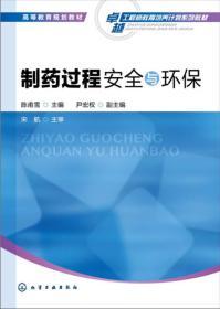 制药过程安全与环保(陈甫雪)