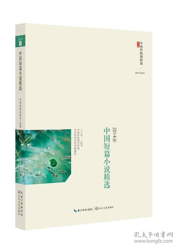 2014年中国短篇小说精选