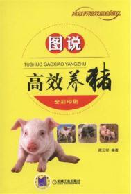 图说高效养猪