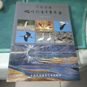 中国·新疆喀什野生鸟类图鉴