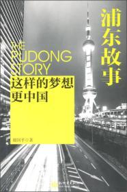 浦东故事 这样的梦想更中国