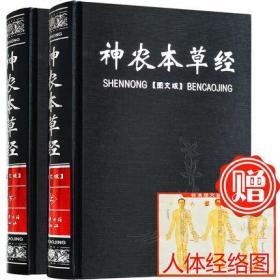 神农本草经 中医书籍大全 中医基础理论 保健养生书籍