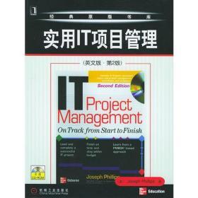实用IT项目管理