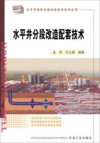 水平井分段改造配套技术 吴奇 石油工业出版社 1900年01月01日 9787502194178