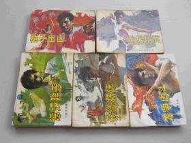 武术家霍东阁全五册2