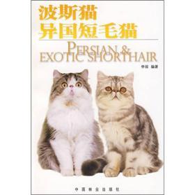 波斯猫、异国短毛猫
