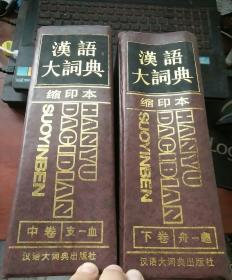 汉语大词典缩印本 中下
