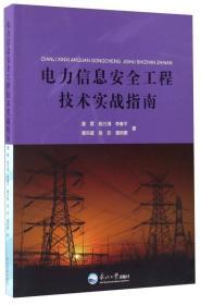 电力信息安全工程技术实战指南