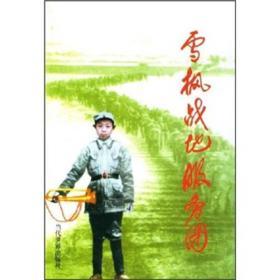 雪枫战地服务团