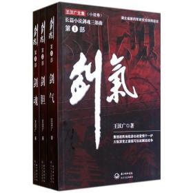 王汉广文集小说卷-剑魂(三部曲)  9787535456205 长江文艺出版社