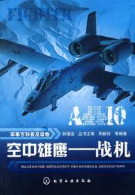 空中雄鹰:战机