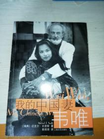 我的中国妻:韦唯