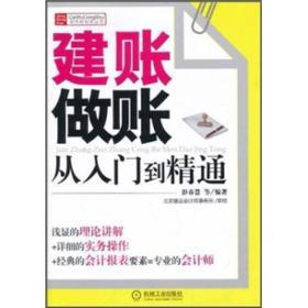 财务轻松学丛书:建账做账从入门到精通