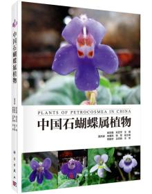 中国石蝴蝶属植物