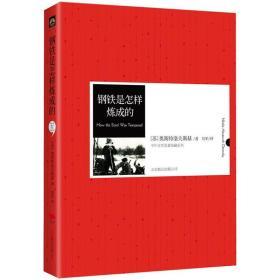 《钢铁是怎样炼成的》中外名著精装典藏本,新课标必读书目