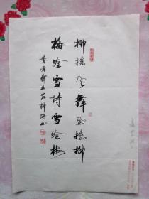 岸柳·本名郝永安,号青源斋主·信硬笔书法(7)