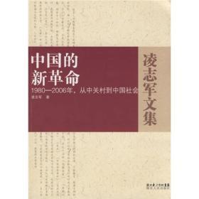中国的新革命-1980-2006年,从中关村到中国社会