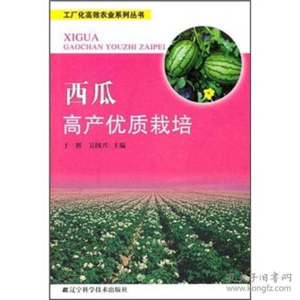 西瓜高產優質栽培