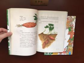 法布尔植物记(上下)