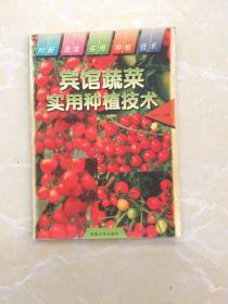 宾馆蔬菜实用种植技术