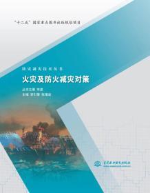 防灾减灾技术丛书:火灾及防火减灾对策