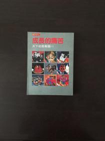 天下丛书 成长的痛苦 天下封面专题(一)