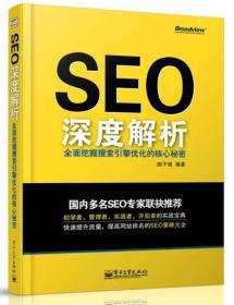 SEO深度解析 专著 全面挖掘搜索引擎优化的核心秘密 痞子瑞编著 SEO shen du jie