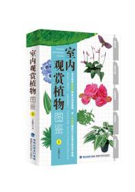 送书签cs-9787533548407-室内观赏植物图鉴-1