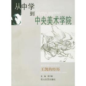 从中学到中央美术学院:王凯的经历