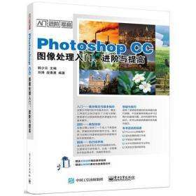Photoshop CC图像处理入门、进阶与提高