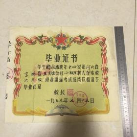 五十年代老毕业证