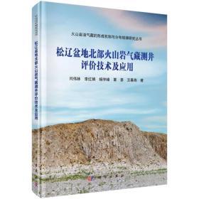 松辽盆地火山岩气藏测井评价技术及应用