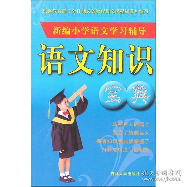 小学语文知识宝典(双色升级版)