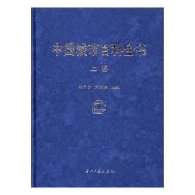 中国城市百科全书 程安东,朱铁臻 当代中国出版社 9787515407951