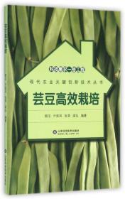 科技惠农一号工程:芸豆高效栽培